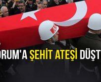 ÇORUM'A ŞEHİT ATEŞİ DÜŞTÜ!