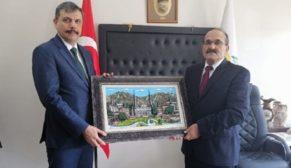 VALİ KARGI'DA İNCELEMELERDE BULUNDU
