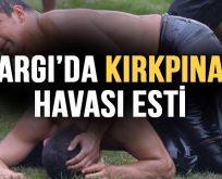 KARGI GÜREŞLERİ KIRKPINAR'I ARATMADI