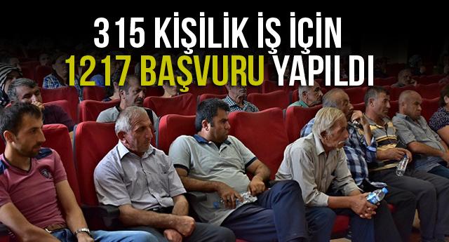 315 KİŞİLİK İŞ İÇİN 1217 BAŞVURU YAPILDI
