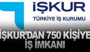 İŞKUR'DAN 750 KİŞİYE İŞ İMKANI