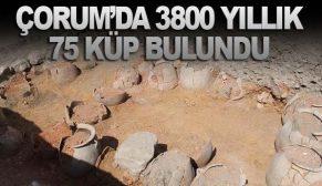 ÇORUM'DA 3800 YILLIK 75 KÜP BULUNDU
