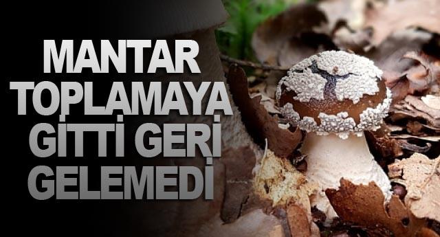 MANTAR TOPLAMAYA GİTTİ GERİ GELEMEDİ